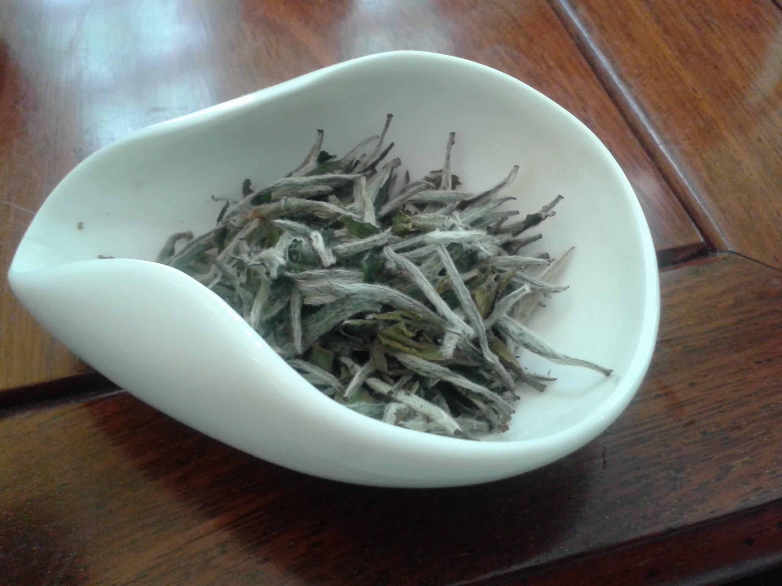 Tè bianco Bai Hao Yin Zhen - Fujian