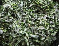 Tè Tencha