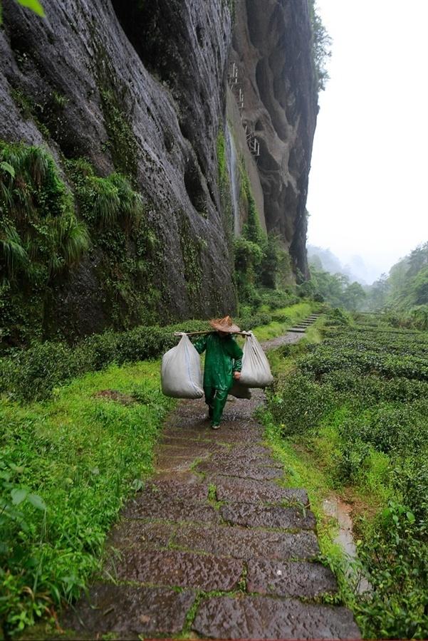 Fujian monte Wu Yi Shan