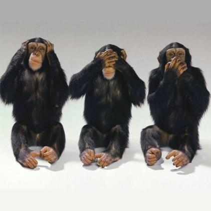 scimmie non vedo non sento non parlo