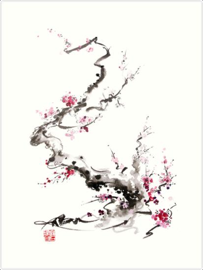 Sakuracha 7