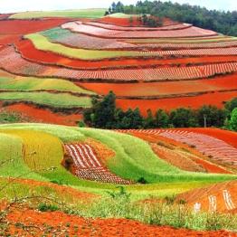 Yunnan - Kunming