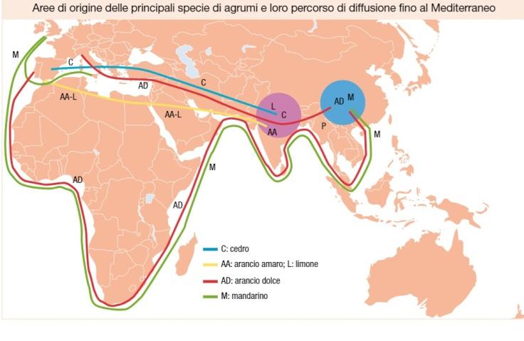 Mappa diffusione agrumi