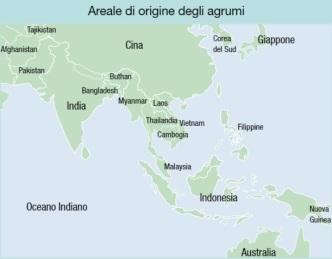 Mappa origine agrumi
