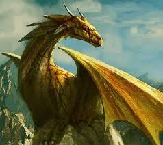 drago giallo