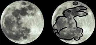 La lepre lunare