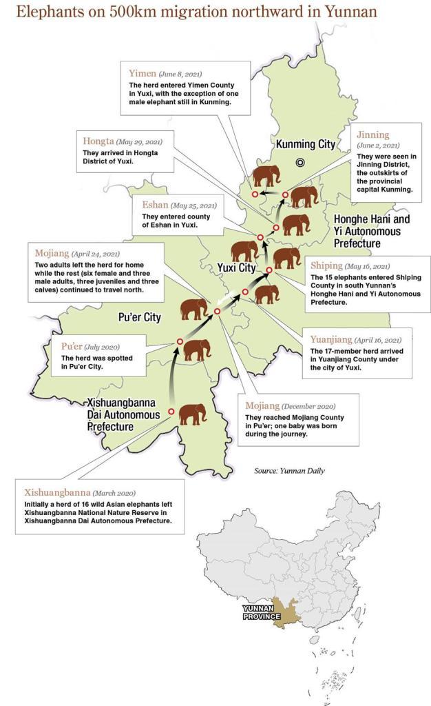 il viaggio degli elefanti nella Provincia dello Yunnan