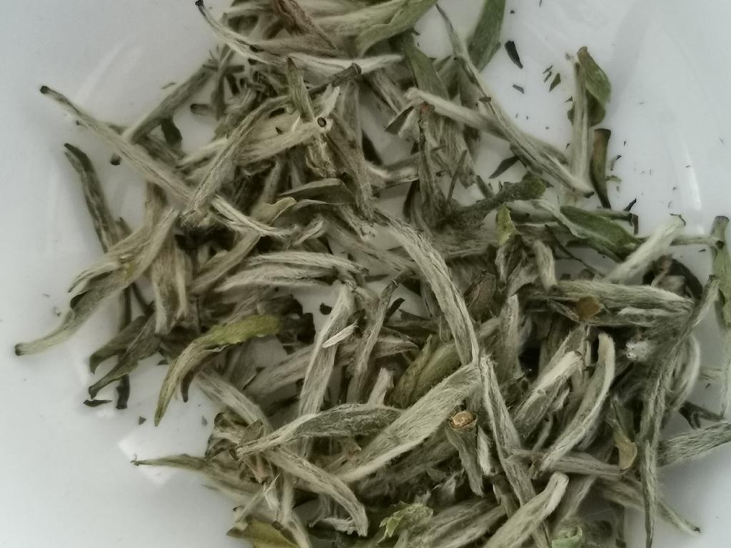 tè bianco Bai Hao Yin Zen