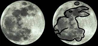 Lepre lunare